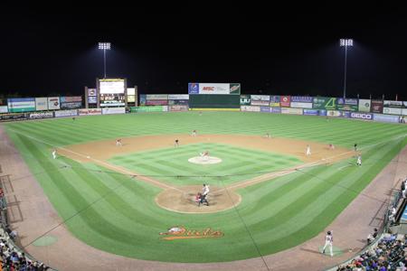 Long Island Ducks Baseball Affordable