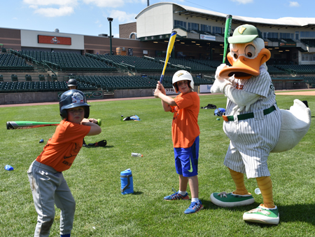 long island ducks baseball affordable family fun on long island