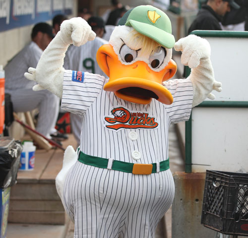 Long Island Ducks Donation Request