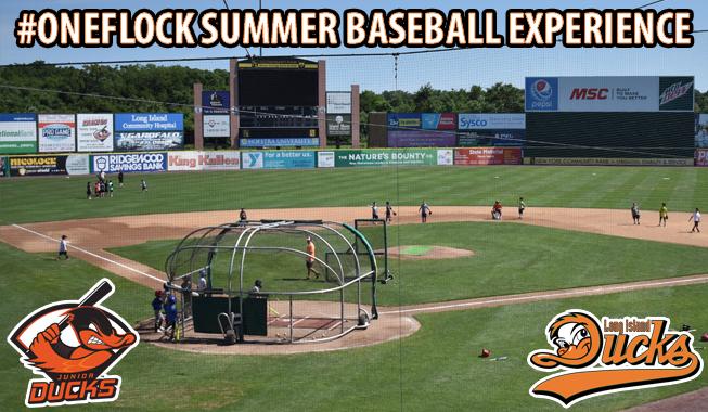 2021-OneFlock-Summer-Baseball-Experience-Story.jpg