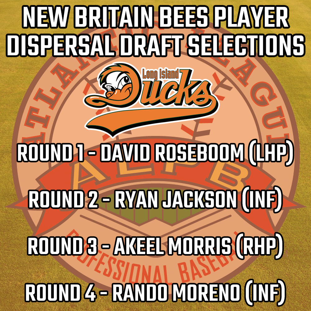 Bees-Player-Dispersal-Draft-Picks-Ducks.jpg