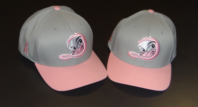 OCTOBER IS BREAST CANCER AWARENESS MONTH - PUT ON A PINK CAP AND DONATE