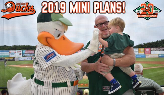 2019-Mini-Plans-II.jpg