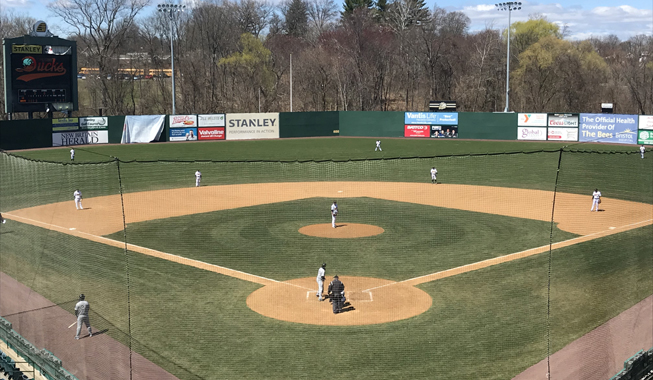 ducks edged by bees in spring training opener