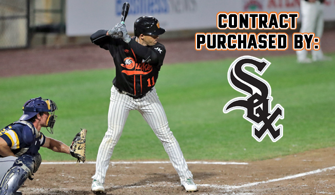 Ivan De Jesus Jr 's Contract Purchased by Chicago White Sox
