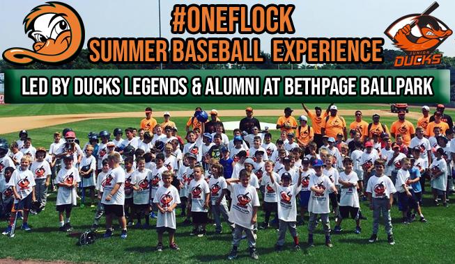 OneFlock-Summer-Baseball-Experience-Story.jpg