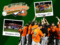 2013 Atlantic League Champions